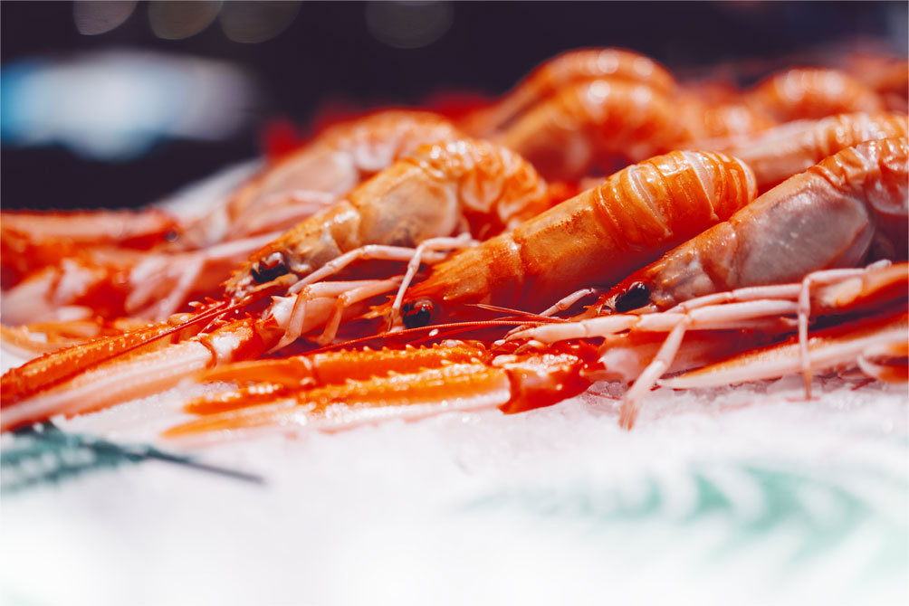Image of some shrimp